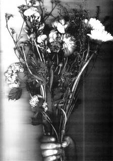 zwart witte achtergrond, hand met zwart witte bos bloemen