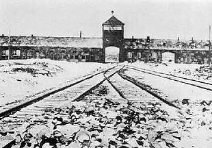 De 'Poort des Doods', de hoofdingang van vernietigingskamp Auschwitz-Birkenau. Wat zonder vooropgezet plan begon eindigde achter deze poort met de moord op een miljoen mensen.