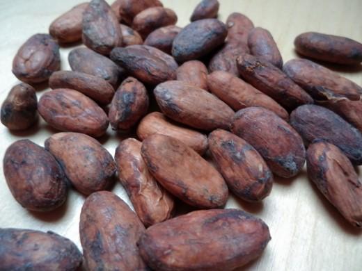 Cacaobonen