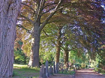 Algemene begraafplaats Enschede