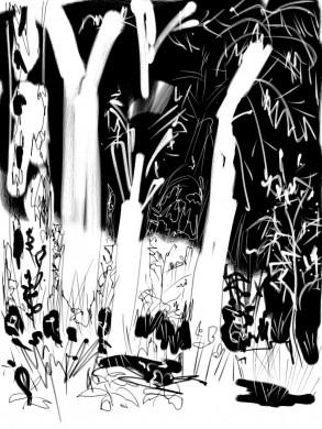 witte bomen, zwarte achtergrond, witte achtergrond, zwarte bloemen en planten