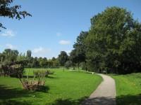 Bomen, struiken, gras, pad in groen, wit, blauwe lucht